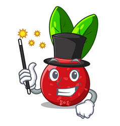magician fruit yangmei isolated on the mascot vector image