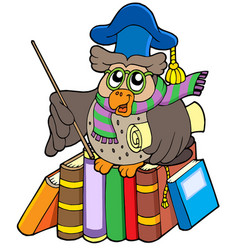 Owl teacher with parchment and books vector