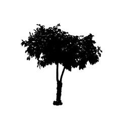 tree 05 vector image