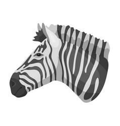 Zebra icon in monochrome style isolated on white vector