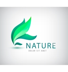 leaf logo vector image