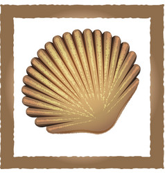 seashell brown vector image vector image