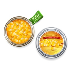 open tin can with grains of maize vector image vector image