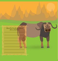 African buffalo vector