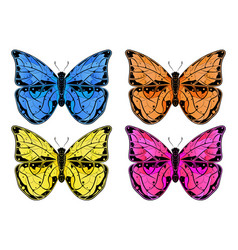 butterfly colored collection vector image