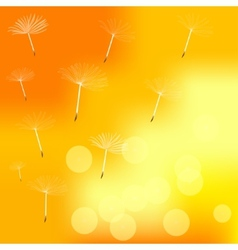 dandelion on a wind loses the integrity vector image