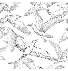 Seamless background with hand drawn seagulls vector