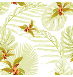 seamless floral tropical pattern cattleya orchid vector image