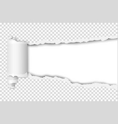 Torn hole in sheet of transparent paper white vector