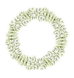 watercolor hand painted wreaths vector image