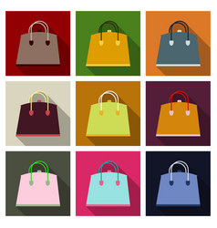 woman bag ladies handbag isolated on background vector image