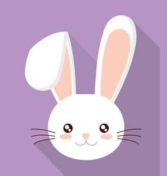 rabbit or bunny icon image vector image vector image