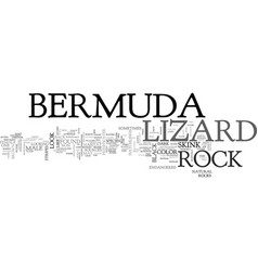 Bermuda rock lizard text word cloud concept vector