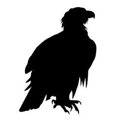 eagle icon falcon vector image
