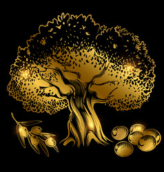 Gold olive tree and olives on black vector