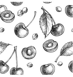 hand drawn cherry seamless pattern vector image