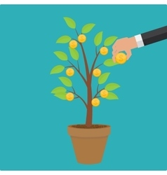 Money Tree Financial Growth Flat Concept vector image