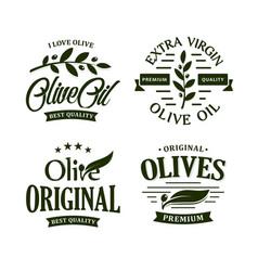 Olive oil premium quality olives branch vintage vector