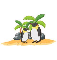 Penguins on white background vector