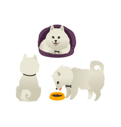 Set of happy smiling white dogs sitting eating vector