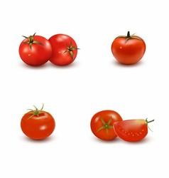 Set of Tomato vector image