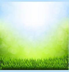 Spring bokeh with grass border vector