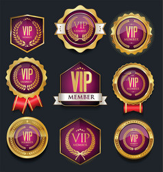 Vip silver and gold label collection vector