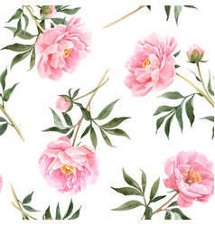 Watercolor peony seamless pattern vector
