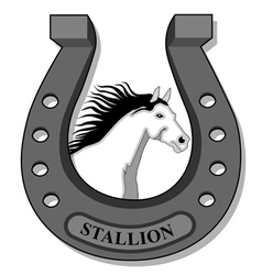 White Horse-Stallion vector