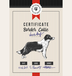 Dog show certificate with border collie vector