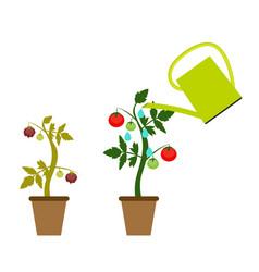 Garden background growing vector