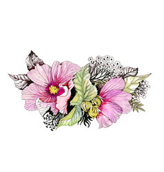 hand drawn watercolor pink flower isolated on vector image