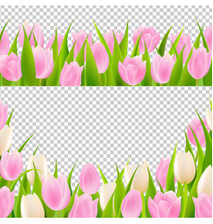 Spring pink tulip borders set vector