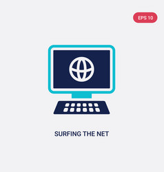 Two color surfing net icon from computer vector