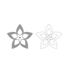 flower the grey set icon vector image