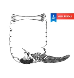 Paper scroll feather and inkwell vector image vector image