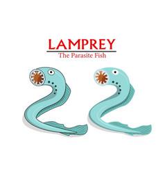 lamprey parasite fish in cartoon design vector image vector image