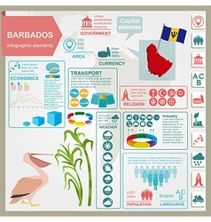 Barbados infographics statistical data sights vector