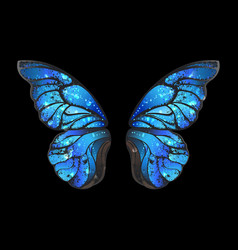 blue butterfly wings vector image