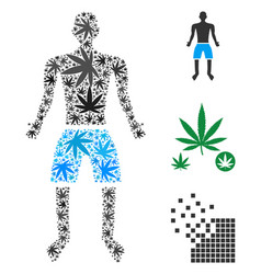 Boy collage of cannabis vector