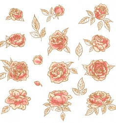 Collection of hand drawn roses vector
