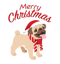 cute pug dog celebrating christmas vector image