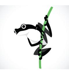 frog B vector image