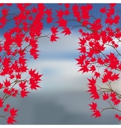 Greeting card of the autumn landscape Red maple vector