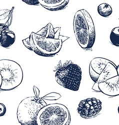 Hand drawn collection of fruits outline on vector