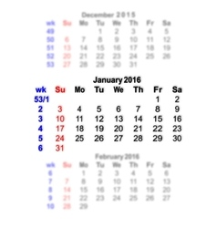 January 2016 Calendar week starts on Sunday vector image