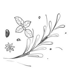 Line drawing vegetable vector