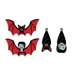 vampire bat and dracula on white cartoon vector image