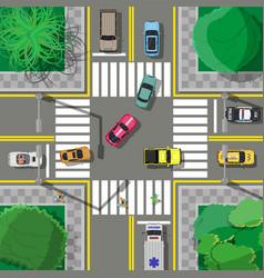 City asphalt crossroad with marking walkways vector