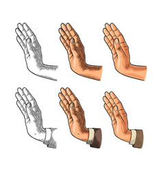 female hand showing stop gesture color vector image